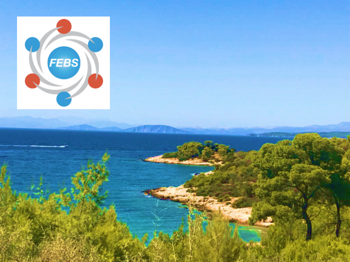 FEBS Advanced Course 2019