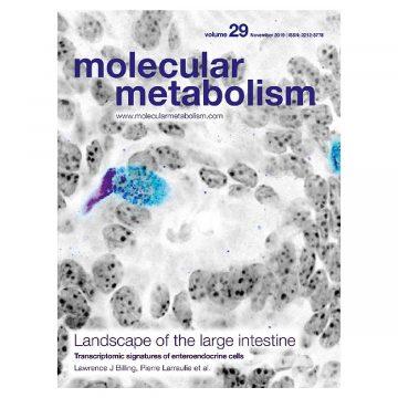 molecular metabolism