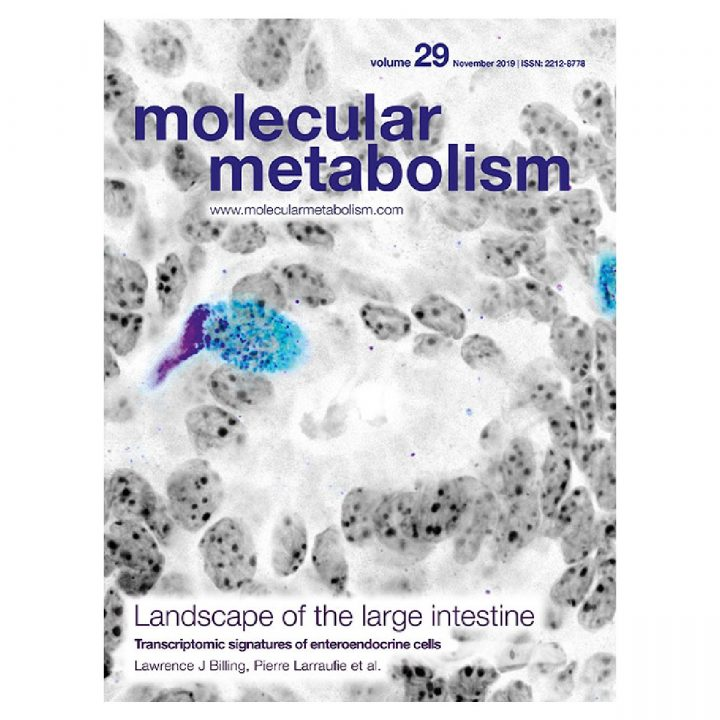 F. Fumeron publishes in Mol Metab