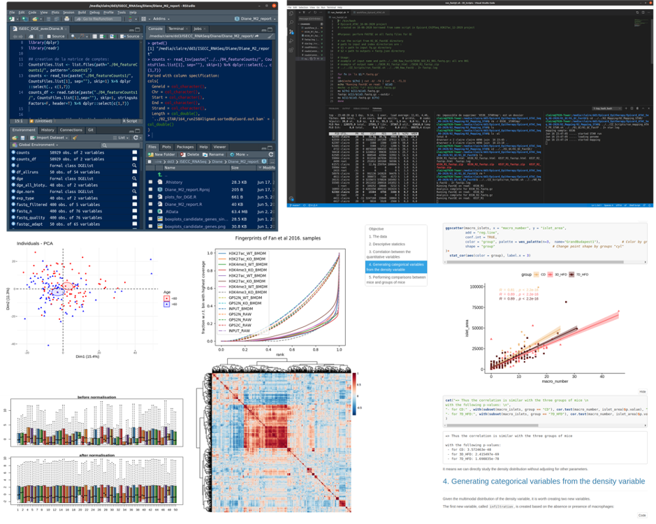 A screenshot composition of an Rstudio session, code in bash, an .Rmd notebook published in html, graphs and statistics.