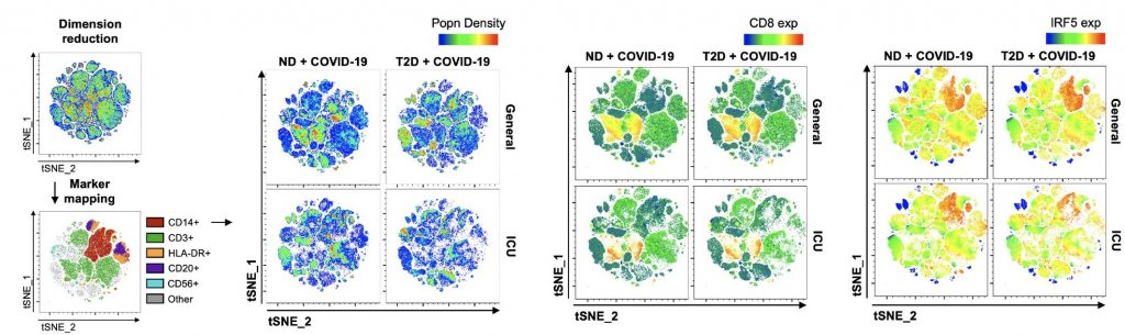 t‐SNE mapping of all cytometric acquired data with projections of population density, CD8 or IRF5 expression.
