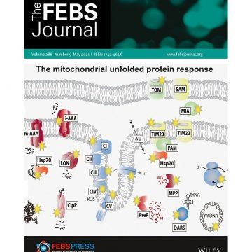 FEBS journal cover_May2021